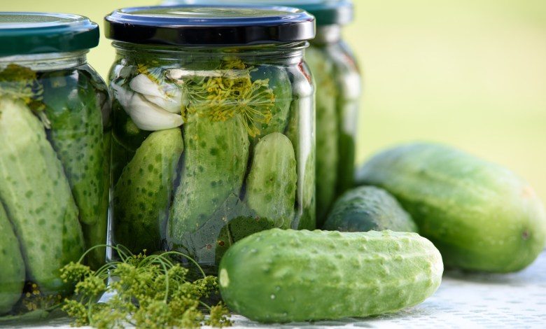 Photo of How to Grow and Pickle Cucumbers