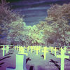 photo - infrared american cemetery in Cambridge