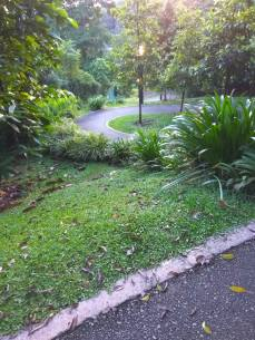 From HortPark to Kent Ridge Park
