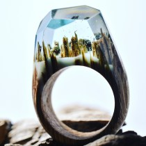 Still life photo of a ring with a tiny surreal landscape inside.