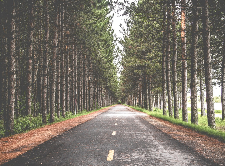 Lifelong Journey of Personal Development - Purpose Driven Mastery