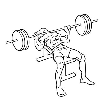 Weightlifting: Bench Press - Purpose Driven Mastery