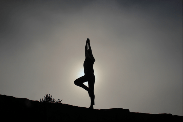 Yoga: Pose - Purpose Driven Mastery