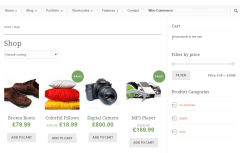 Modernize- Shop page layout of this theme