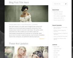Blog Layout of StyleShop