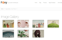 Image Gallery Page Foxy Theme