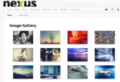 Image Gallery on Nexus