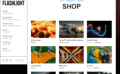 Flashlight- Shop page with 3 items in a row and shows details on hover