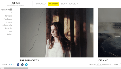 Fluxus- Horizontal portfolio layout with large images and filters at left