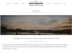 Photography-WordPress-theme