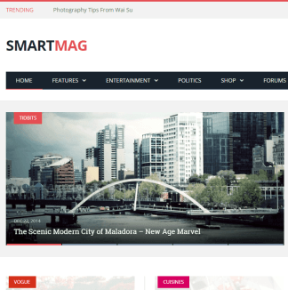 SmartMag- A responsive magazine WordPress theme