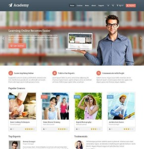 Academy Wordpress theme responsive layout