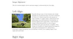 Image allignment page of Romangie theme