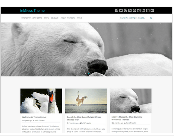 Inkness-Responsive WordPress Theme.