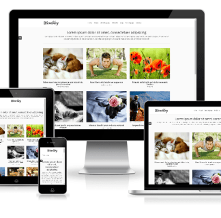 Wembley - free premium portfolio WordPress theme.