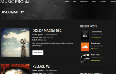 Music Pro- Discography Page suitable for you band site