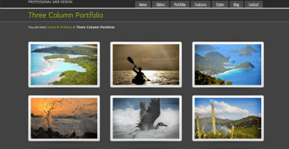 PureVISION- 3 column portfolio layout supported by PureVision