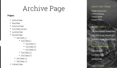 Archive page of Sixteen Nine Pro theme