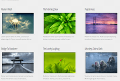 Envisioned- Portfolio layout with text and 3 columns