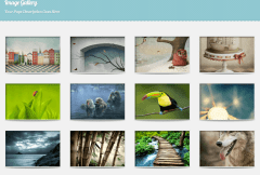 Feather- Image gallery layout