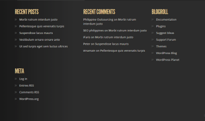 Footer of TheStyle theme