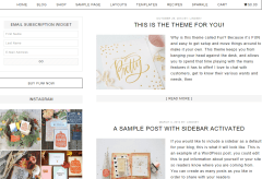 Fun- Blog page layout of this theme