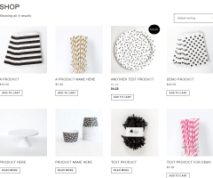 Fun- Shop page of this theme is very elegant
