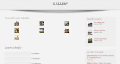 Gallery of Folo theme