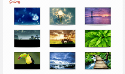 LeanBiz- Gallery with grid view and shows amazing effects on hover
