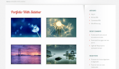 LeanBiz- Portfolio with sidebar is another layout provided by this theme