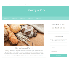 Lifestyle Pro- Front page of this theme showing 2 navigation bars
