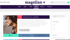 Magallen-WordPress-Theme-Front-page