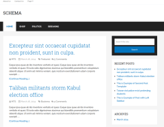 Minimal-Design-Schema-WordPress-theme