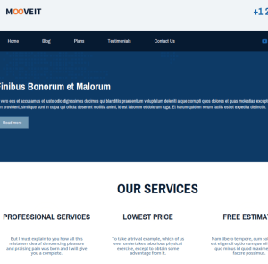 Mooveit-Lite-Wordpress-theme