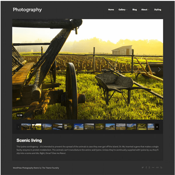 Photography- Responsive elegant WordPress theme with dark and light color schemes