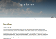 Raindrops-Single-Page-Of-blogs