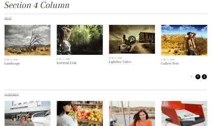 Responz- Another beautiful layout showing 4 columns section in fullwidth