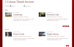 Rezo- 2 column thumb section for blog layout