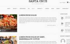 Santa Cruz- Theme supports 2 blog layouts