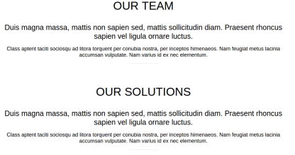 Team and Solution page of startup pro
