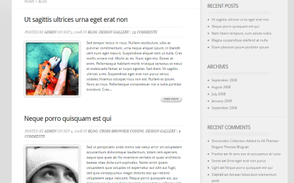 TheProfessional-Classic blog page is supported by theme
