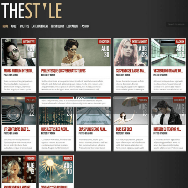 TheStyle – Fully responsive Magazine style theme