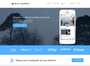 biz-launcher-homeage