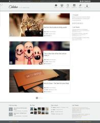 celestino-free-theme-Blog-Page-WordPress-Theme