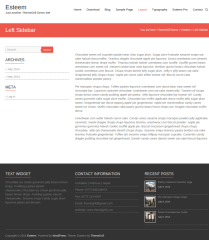 Esteem-Responsive-WordPress-theme