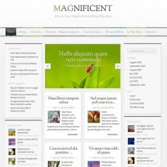 magnificent-wordpress-theme1