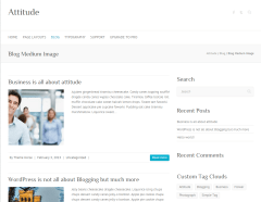 Blog page of Attitude theme