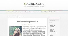 Magnificent-WordPress-Responsive-Theme