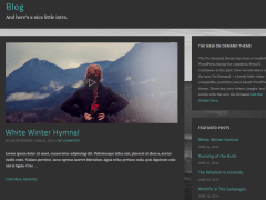 Blog page of On Demand theme