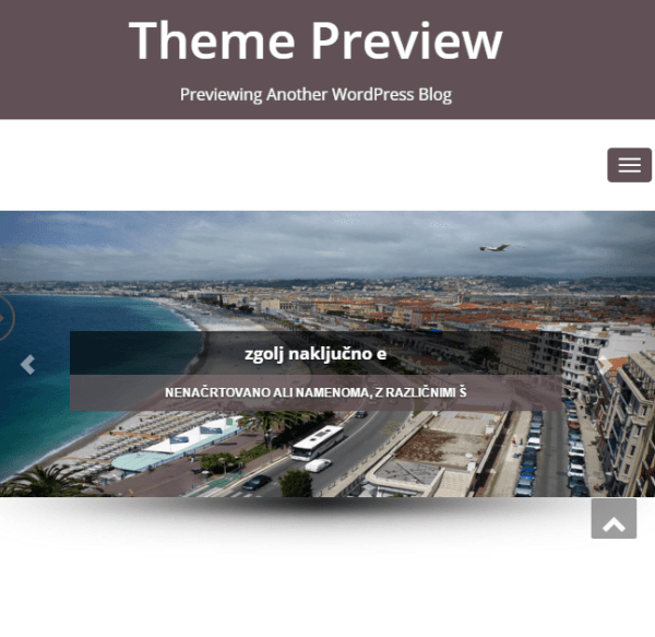 Enigma-parallax – A WordPress theme for business sites